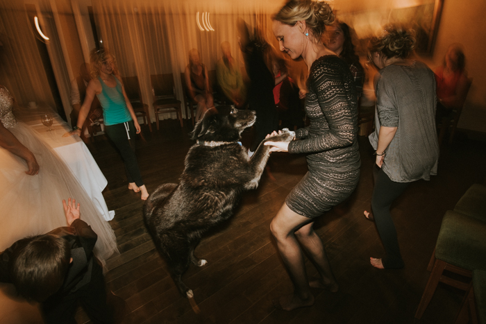Fairmont Jasper Winter Wedding. Dog dancing at wedding reception.